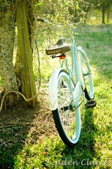 Bike Alone-1